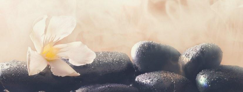 Sauna steam stones